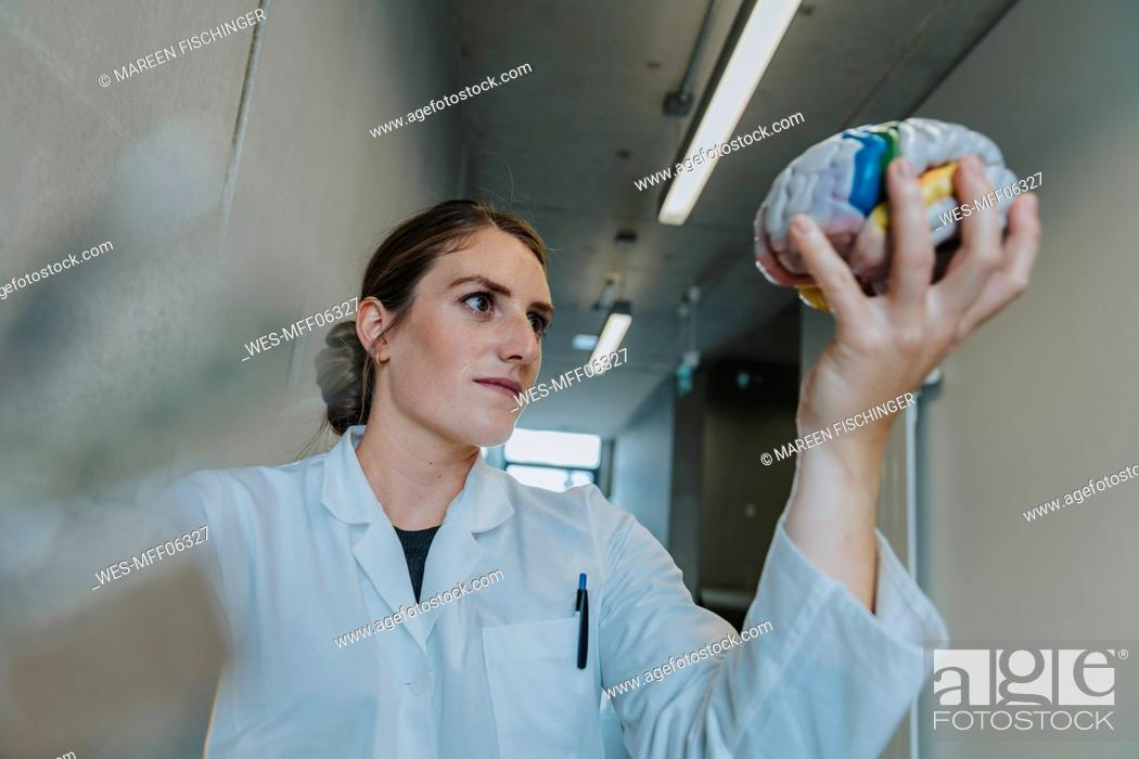 Imagen: Scientist holding multi colored artificial brain while standing at clinic corridor.