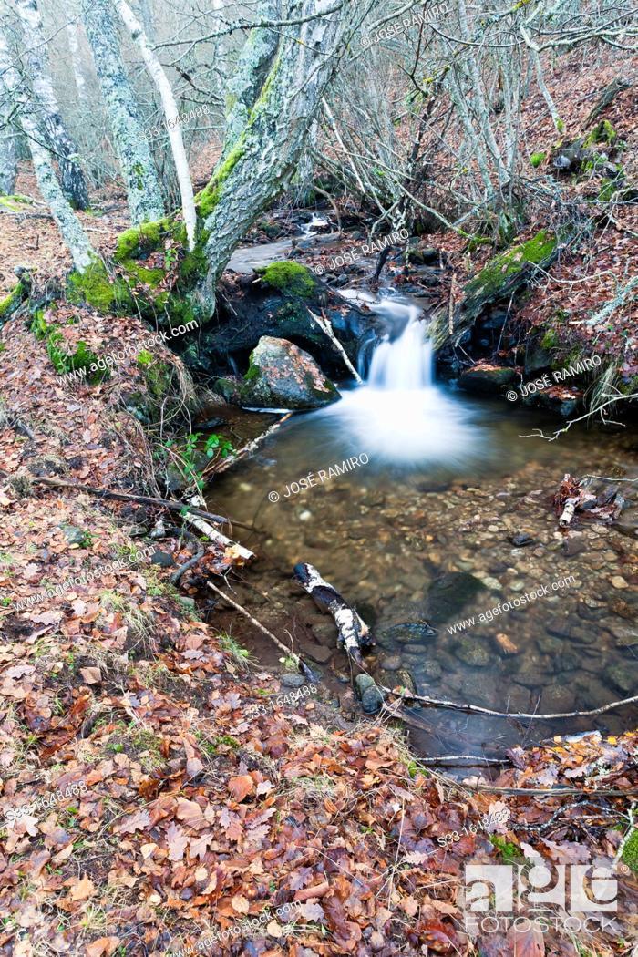 Stock Photo: The Dehesa stream in the Sierra Norte  Somosierra  Madrid  Spain.