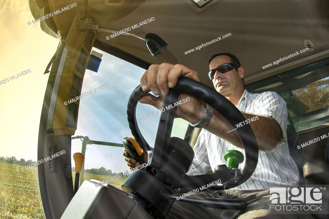 Stock Photo: Piedmont, Italy, Driver in the combine cabin, looks from the driving position, while threshing the corn field.