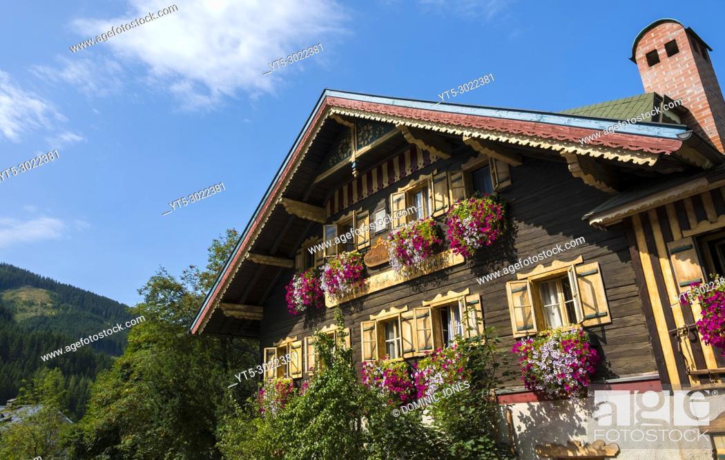 Stock Photo: The flowers of Fiakerwirt , Filzmoos, Austria, Europe.
