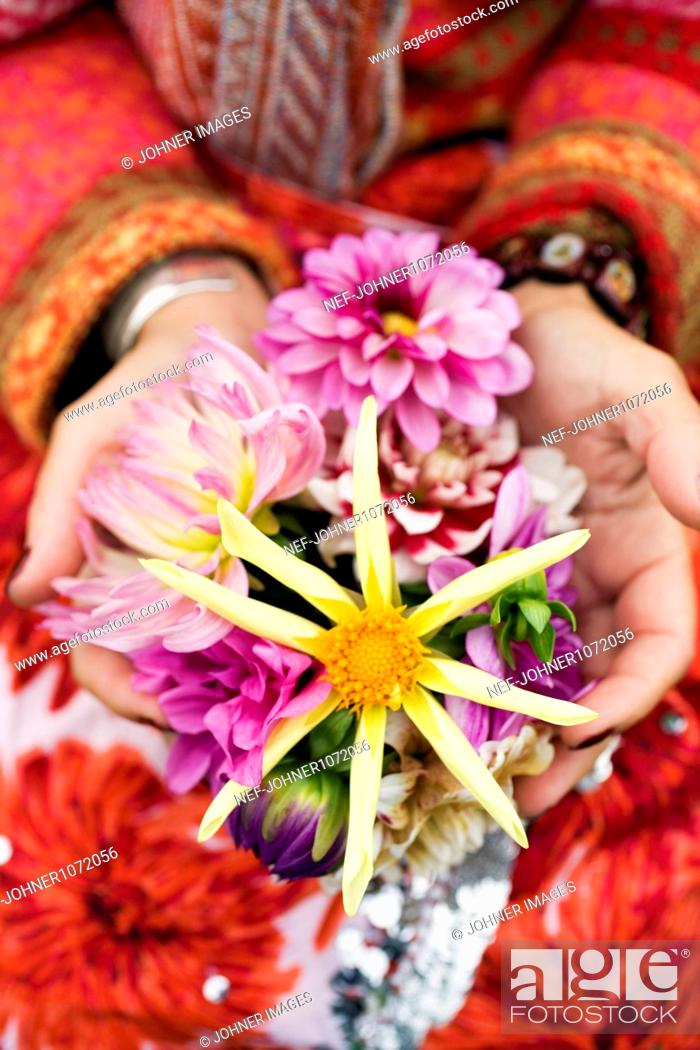 Stock Photo: Young woman holding dahlias.