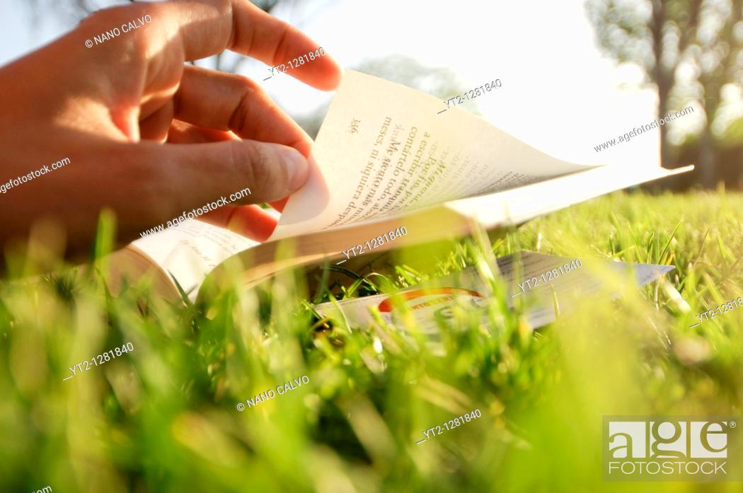 Stock Photo: Young attractive woman reading a book in park.