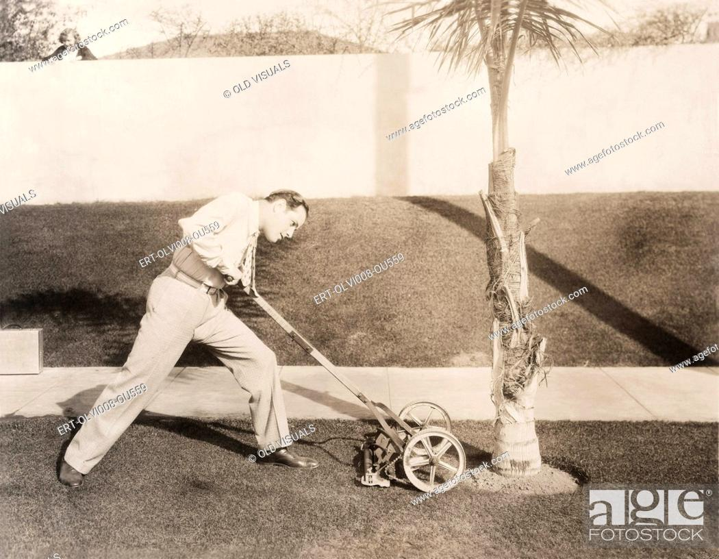 Stock Photo: Man attacking palm tree with lawn mower.