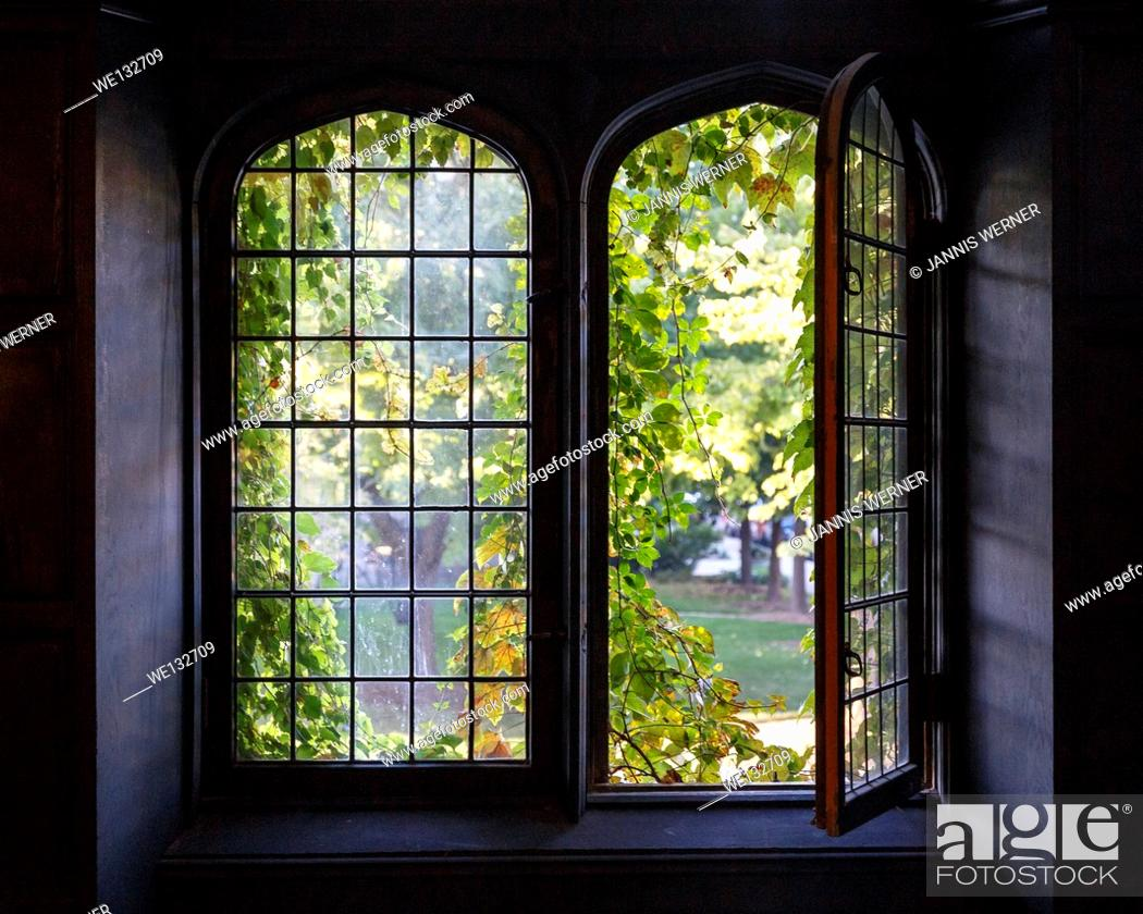 Stock Photo: Light spills through a half-open window at a university building in Chicago, IL, USA in early Fall.