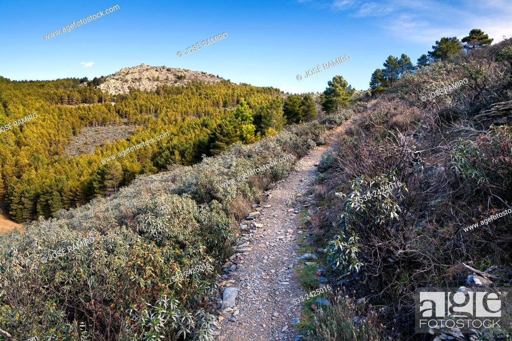 Stock Photo: Hierro gorge track in the Sierra Norte. Patones. Madrid. Spain. Europe.