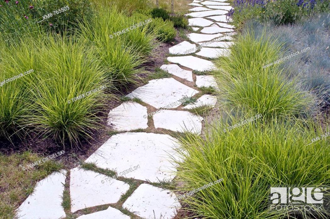 Stock Photo: Pathway and Koeleria grass.