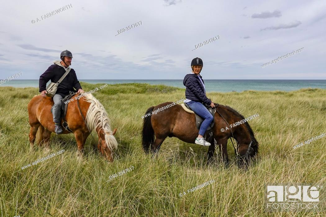 Hirtshals Denmark A Middle Aged Couple Horseback Riding Among The Wind Swept Dunes And High Grasses Stock Photo Picture And Rights Managed Image Pic D50 3547617 Agefotostock