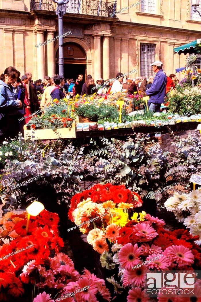 Stock Photo: France, Bouches du Rhone, Aix en Provence, flower market on town hall square.