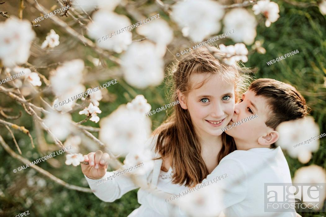 Stock Photo: Brother kissing while embracing sister by almond tree.