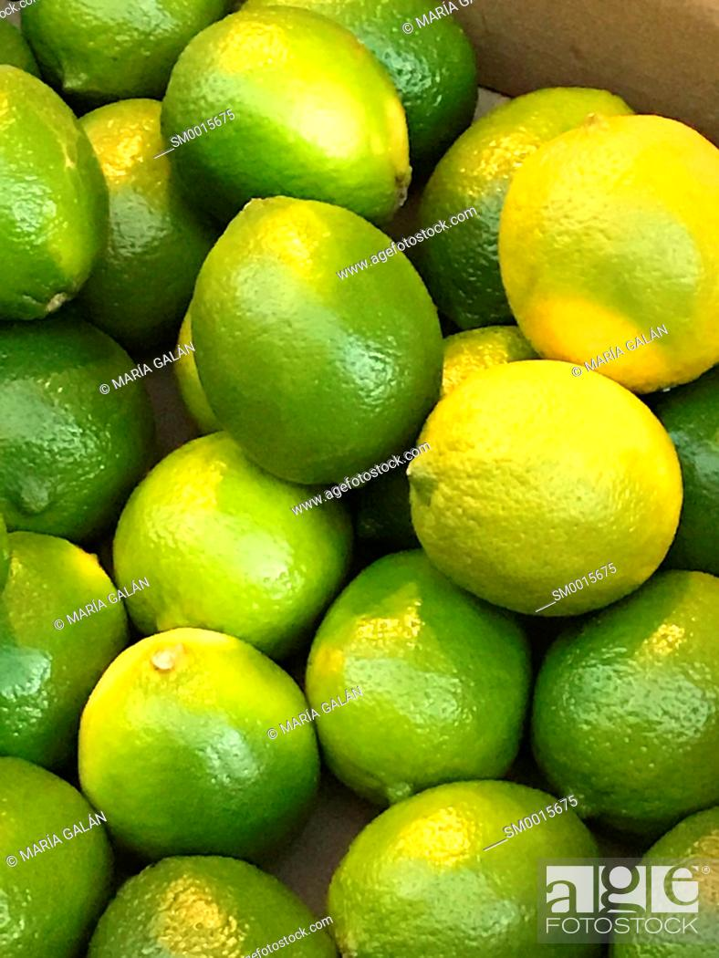 Stock Photo: Limes.