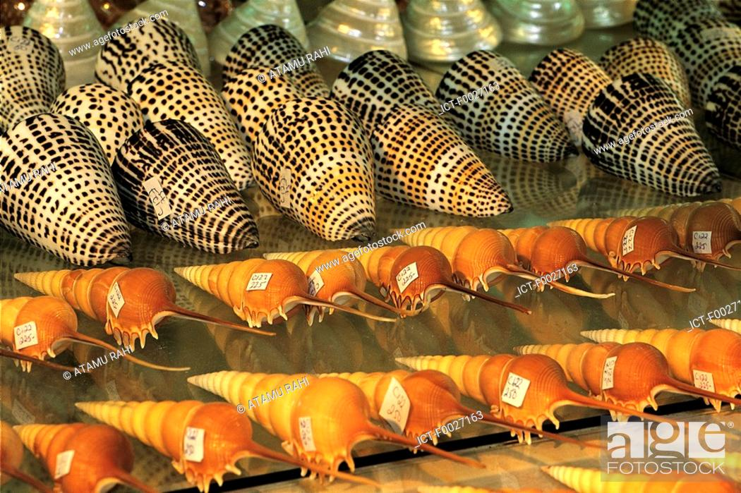 Stock Photo: Mauritius, shells for sale.