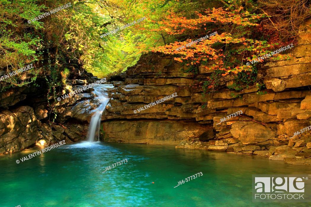 Stock Photo: Borrué ravine on the way to La Pardina forest. Huesca.