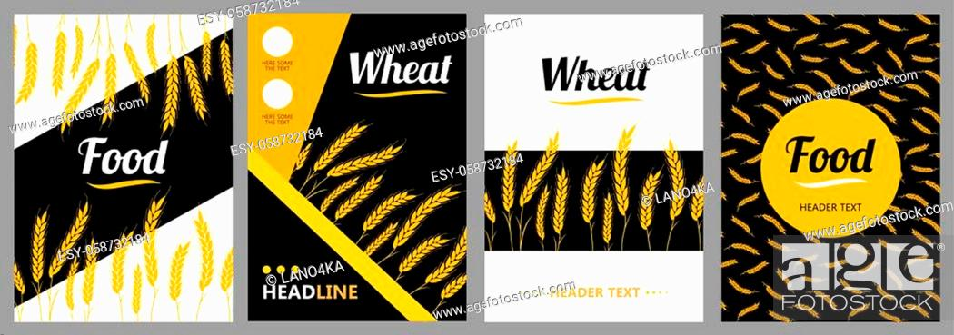 Stock Vector: Set Design flyer Wheat Ears on white and black background. For Natural Product Company. Organic wheat, bread agriculture.