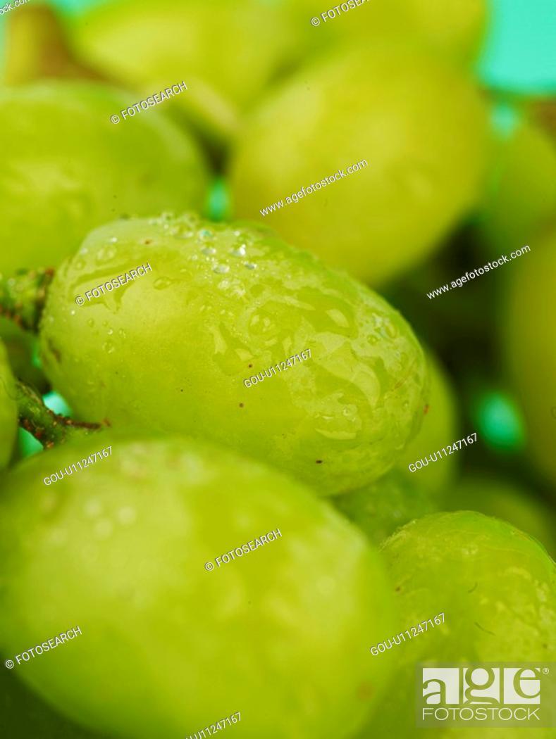 Stock Photo: plant, grape, fruit, plants, green grape.