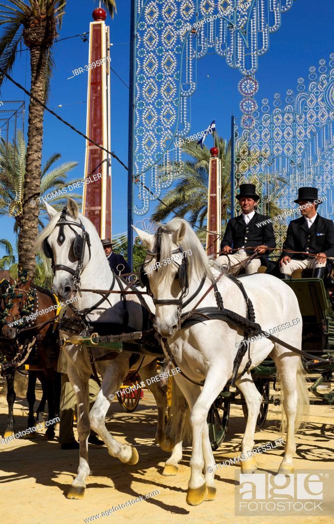 Stock Photo: Decorated horses and dressed up coachmen at the Feria del Caballo Horse Fair, Jerez de la Frontera, Cádiz province, Andalusia, Spain.
