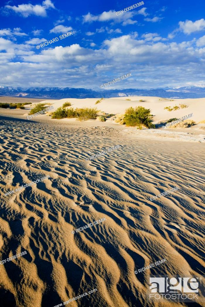 Stock Photo: Stovepipe Wells sand dunes, Death Valley National Park, California, USA.