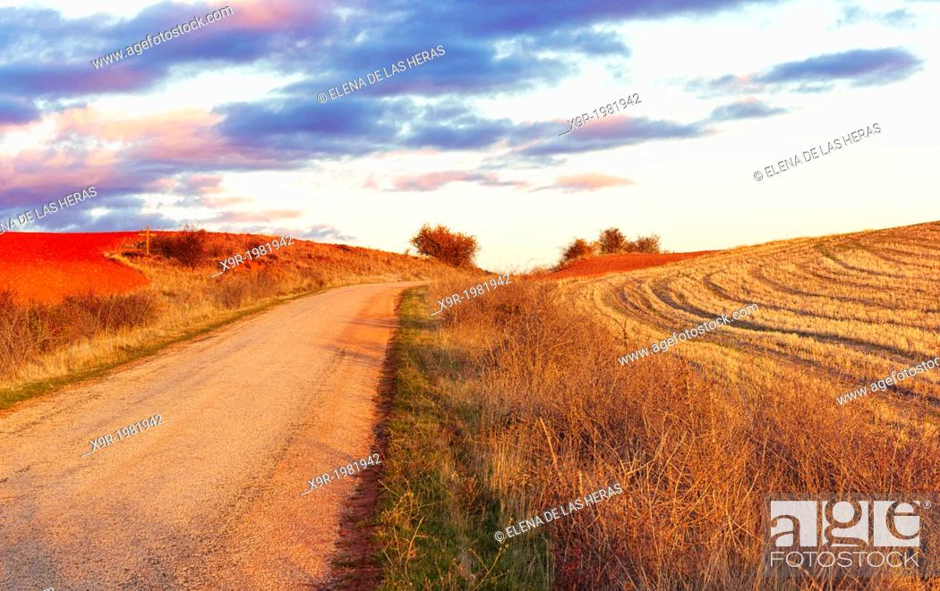 Stock Photo: Rural landscape. Northwest of Guadalajara province. Castille La Mancha. Spain.