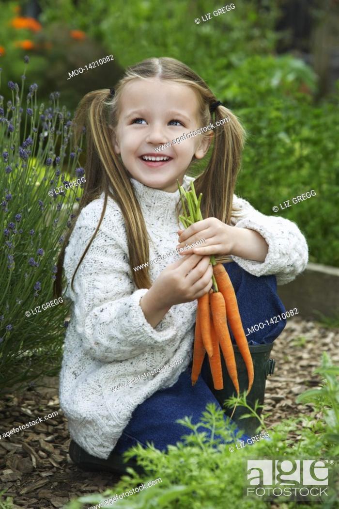 Stock Photo: Girl 5-6 holding carrots in garden.