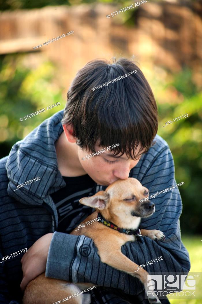 Stock Photo: young man caring for small Chihuahua.