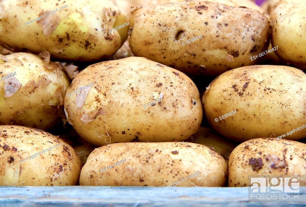 Stock Photo: Patatoes.