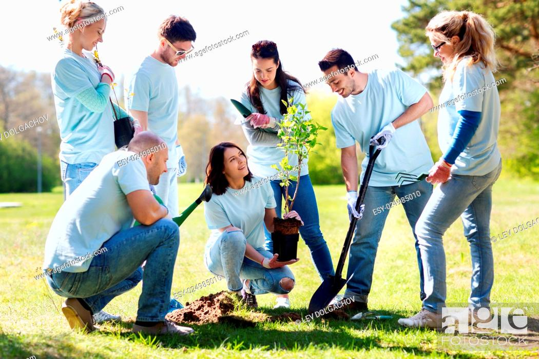 Stock Photo: volunteering, charity, people and ecology concept - group of happy volunteers planting tree and digging hole with shovel in park.