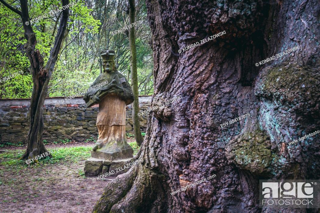 Stock Photo: Old tree and sculpture in park behind chateau in Vizovice town, Zlin Region, Moravia in Czech Republic.