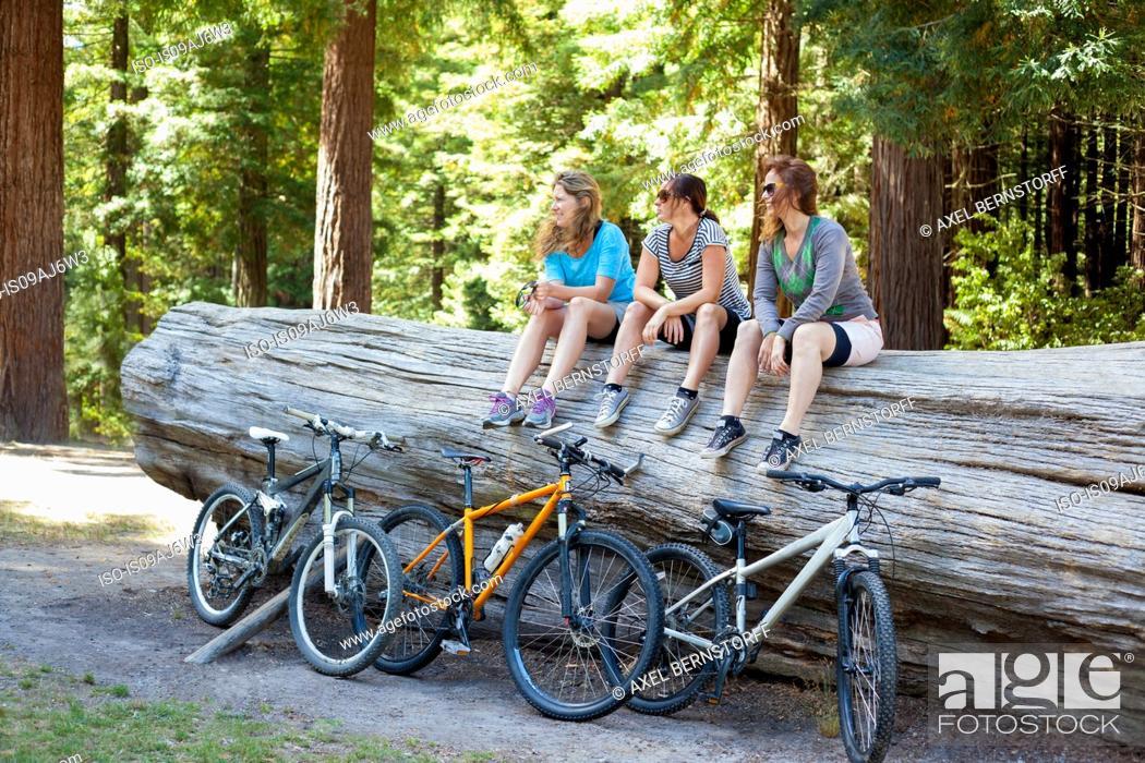 Imagen: Three women mountain bikers sitting on tree trunk in forest.
