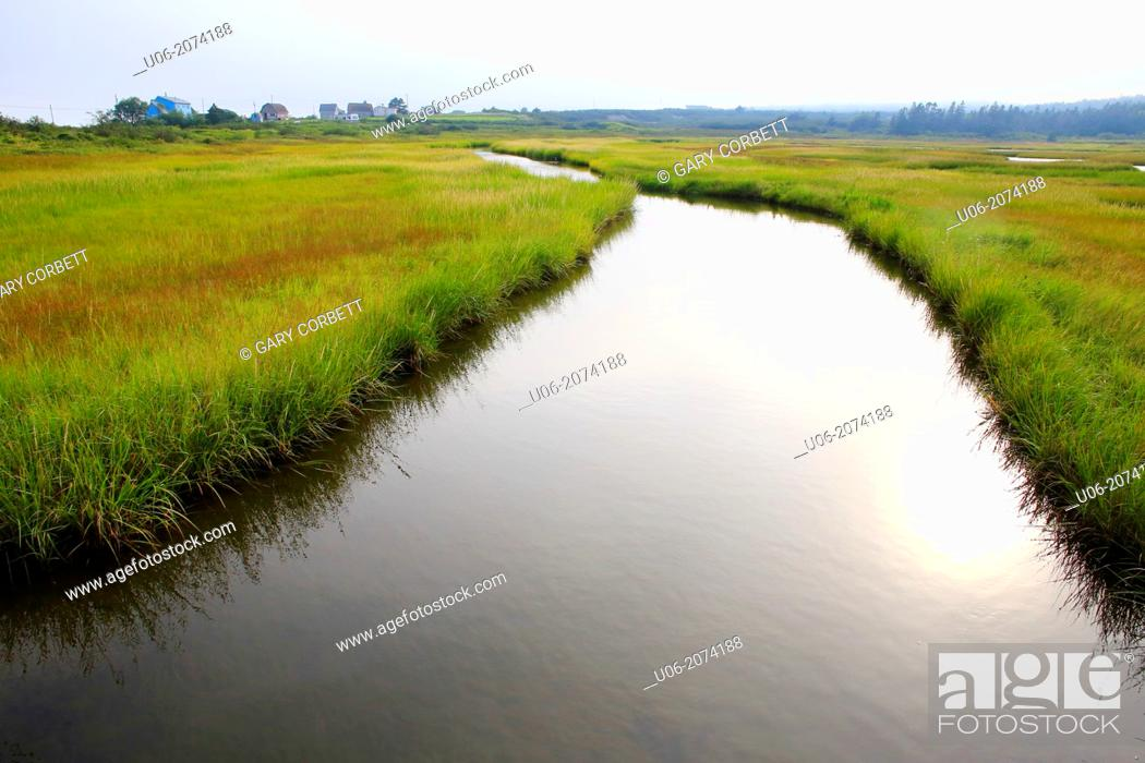 Stock Photo: A brook and salt marsh in Nova Scotia, Canada.