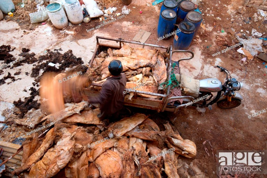 Stock Photo: North Africa, Morocco, Fes district, Medina of Fes.Leather processing.