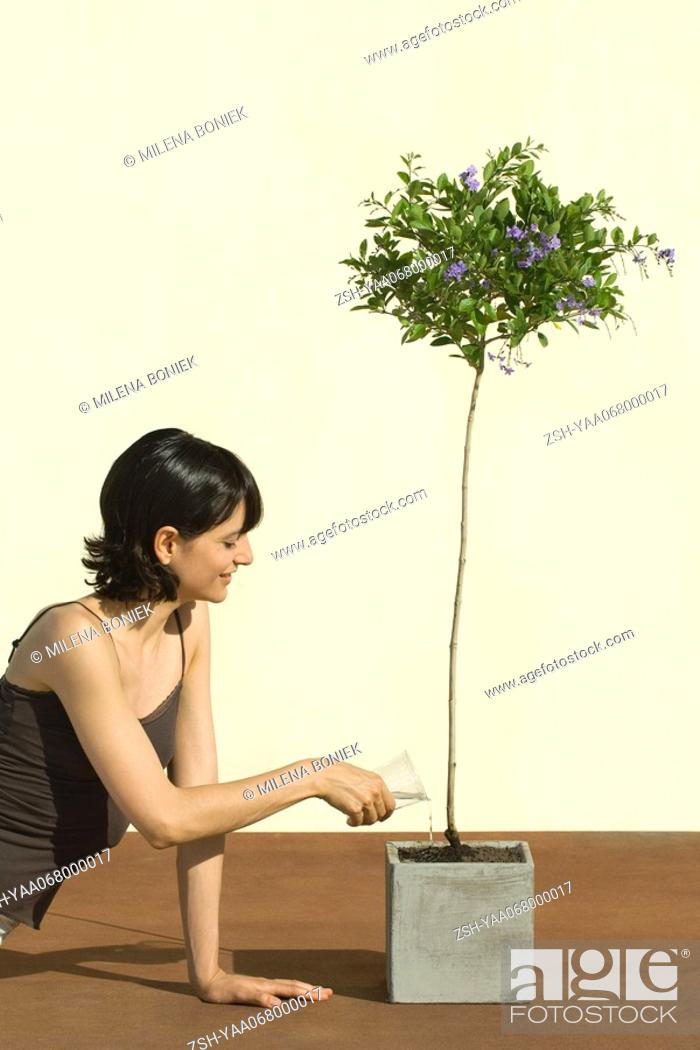 Stock Photo: Woman watering potted plant, smiling.