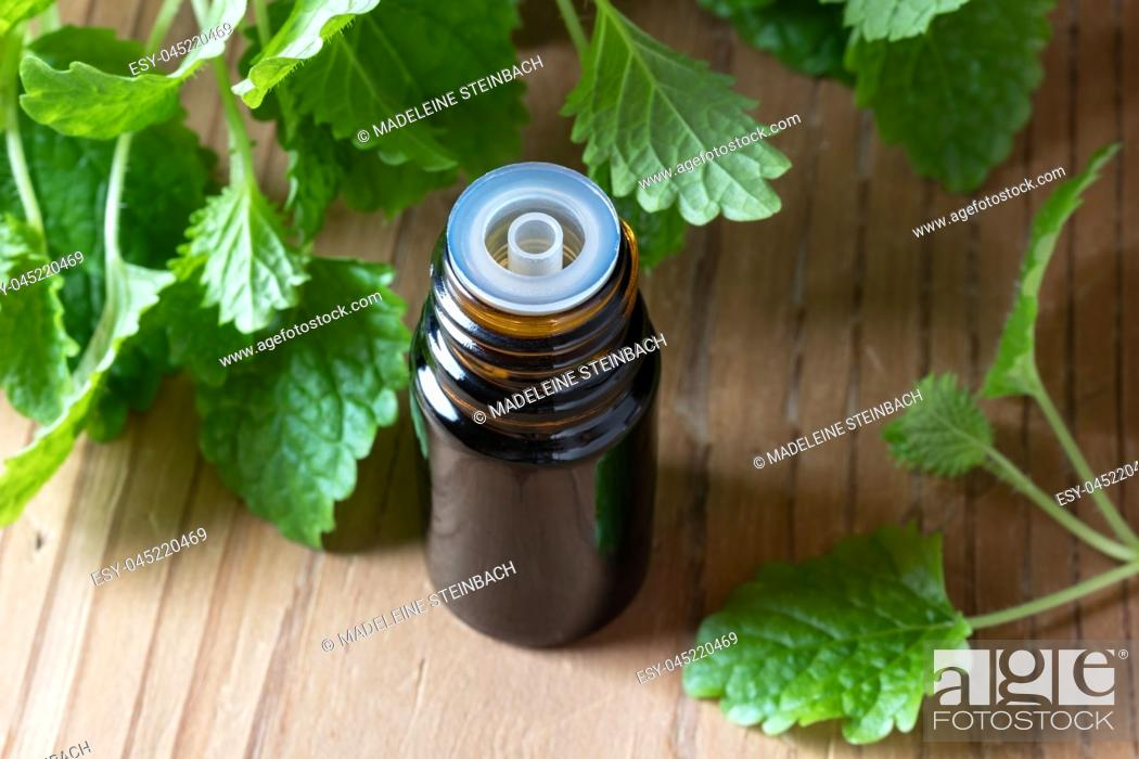 Stock Photo: A bottle of essential oil with fresh melissa leaves.