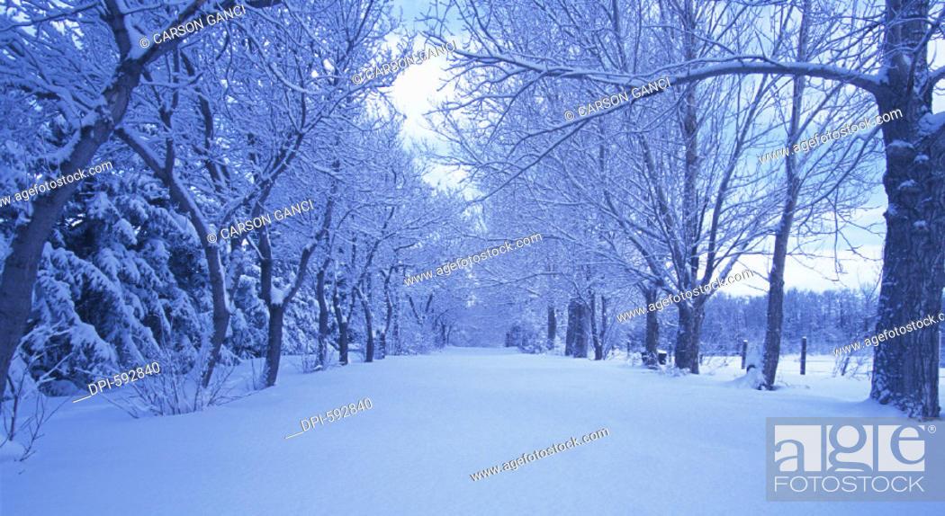 Photo de stock: Winter.