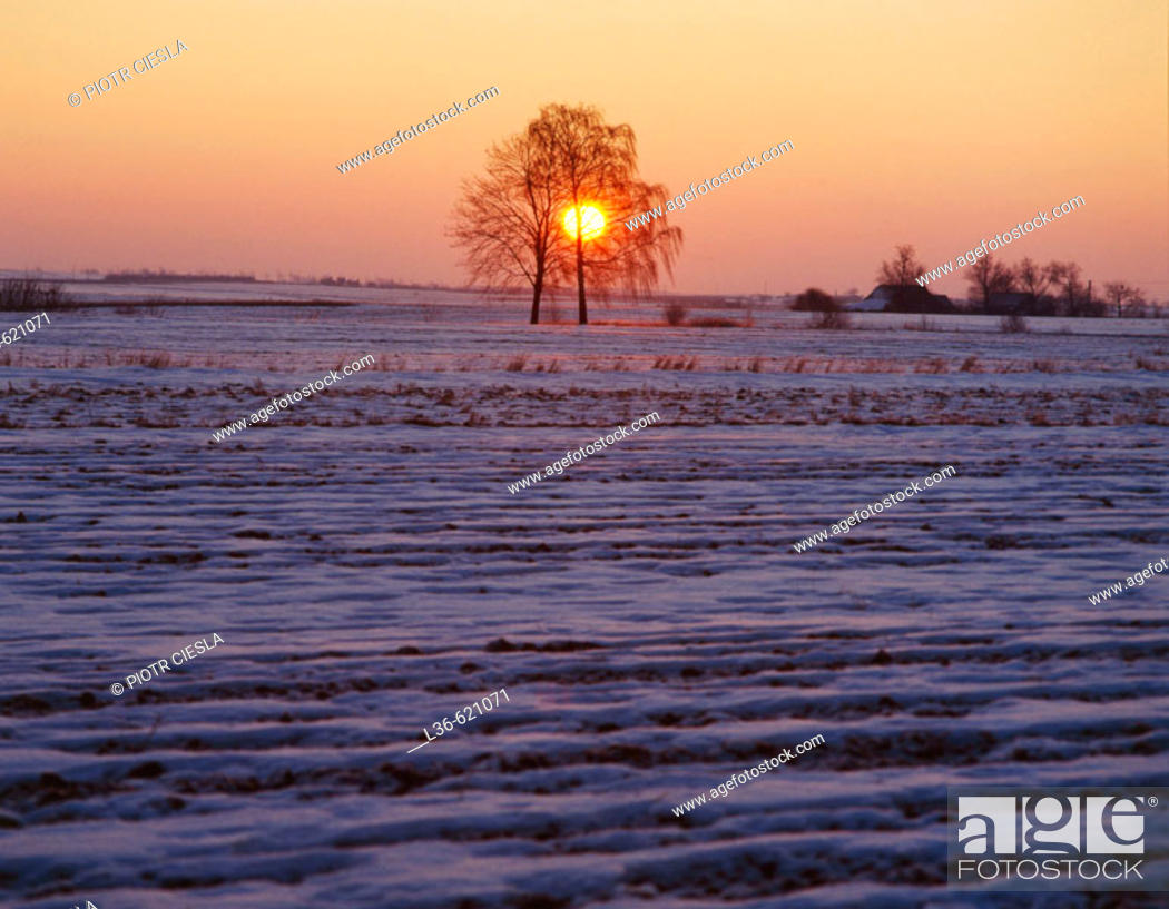 Stock Photo: Winter sunrise. Central Poland.