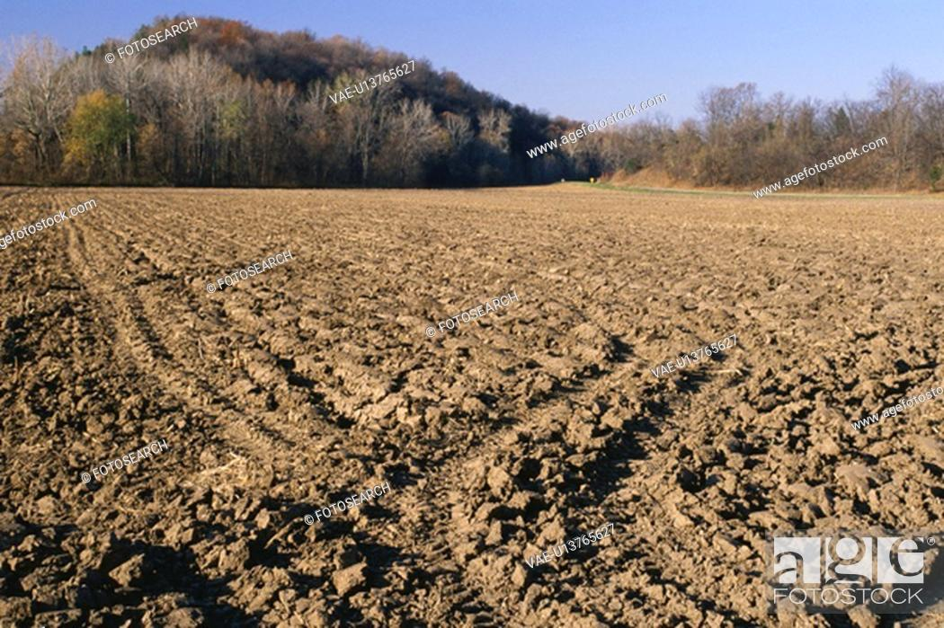 Stock Photo: Plowed field at edge of woods.
