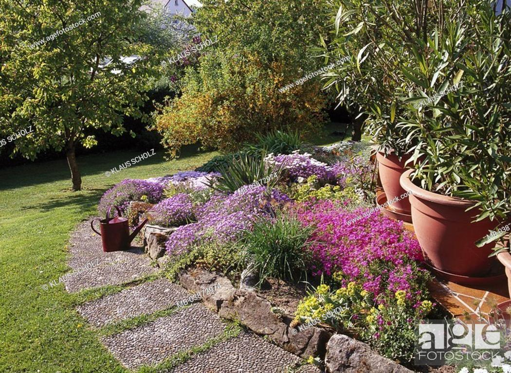 Garden Flower Bed Rockery Flowers Way Meadow Summers