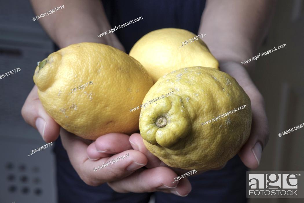 Stock Photo: Organic unwaxed lemons.