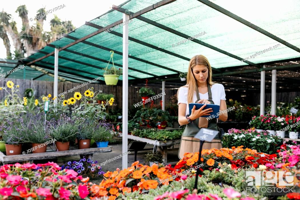 Stock Photo: Female worker in a garden center using a tablet.