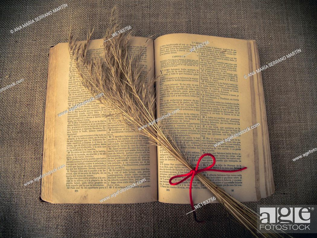 Stock Photo: Vintage style. open antique book with dry grass and red thread with burlap background.