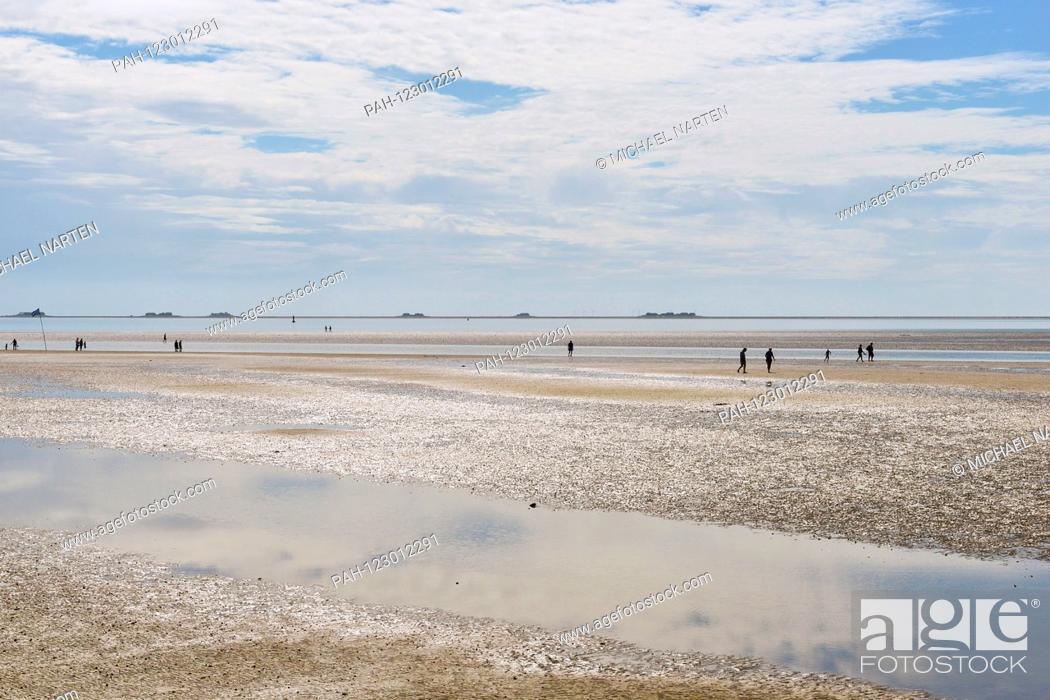 Stock Photo: The dry out Wadden Sea in front of Wyk's southern beach at low tide with buildings from the small island Hallig Langeneß on the horizon.