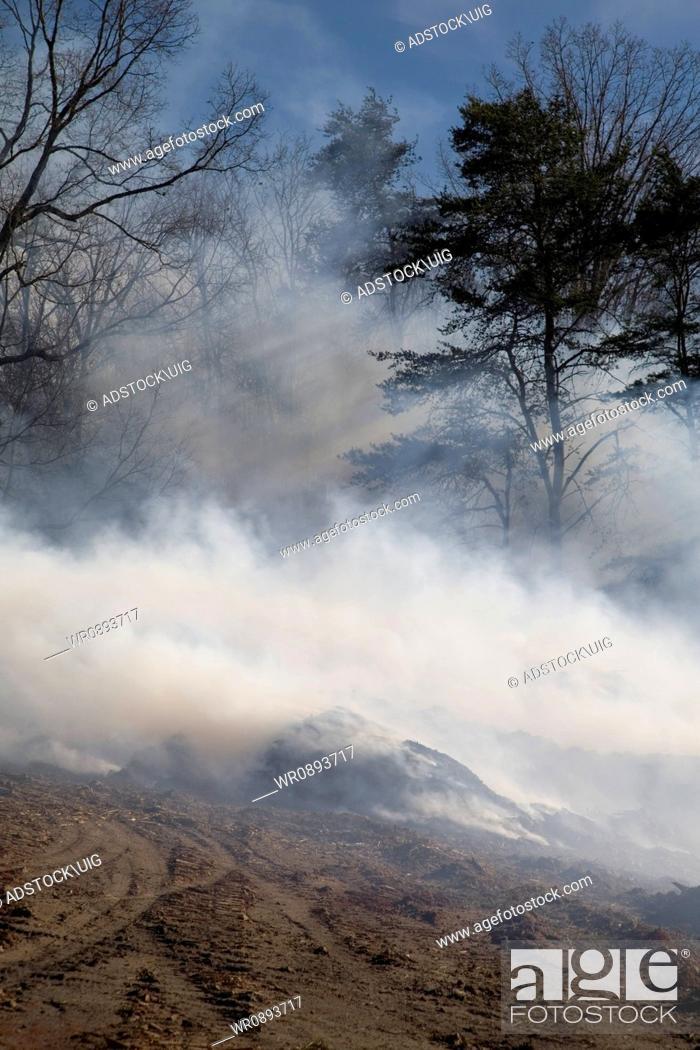 Stock Photo: Mulch Fire at Condo Development, Sevier County, TN.