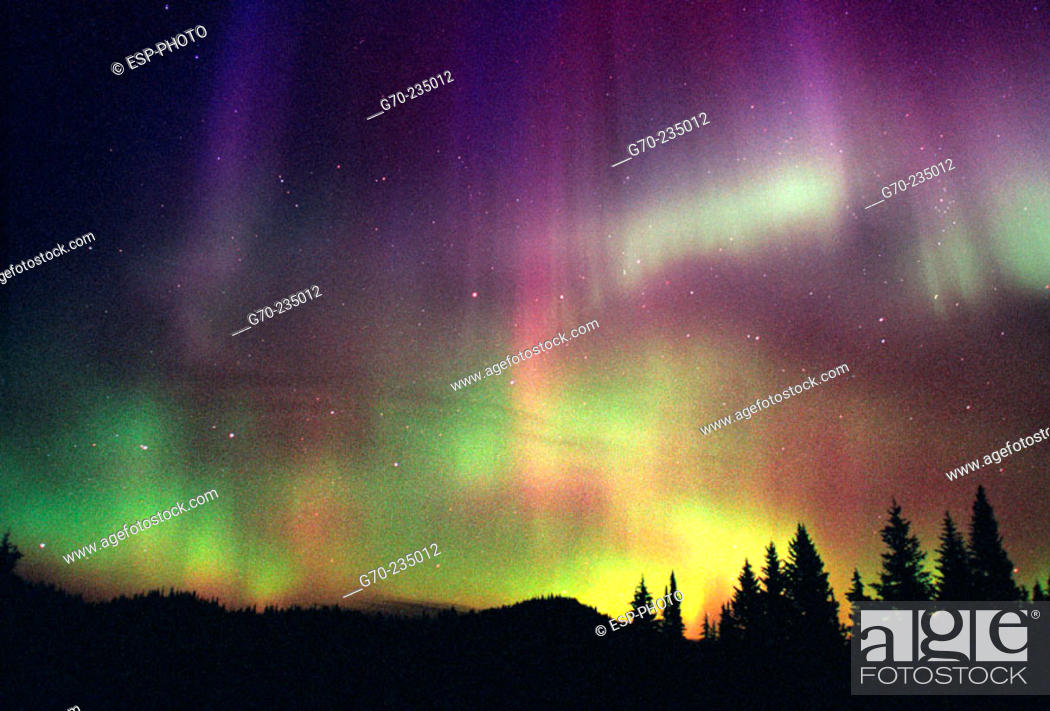 Stock Photo: Northern Lights, Aurora Borealis. British Columbia. Canada.