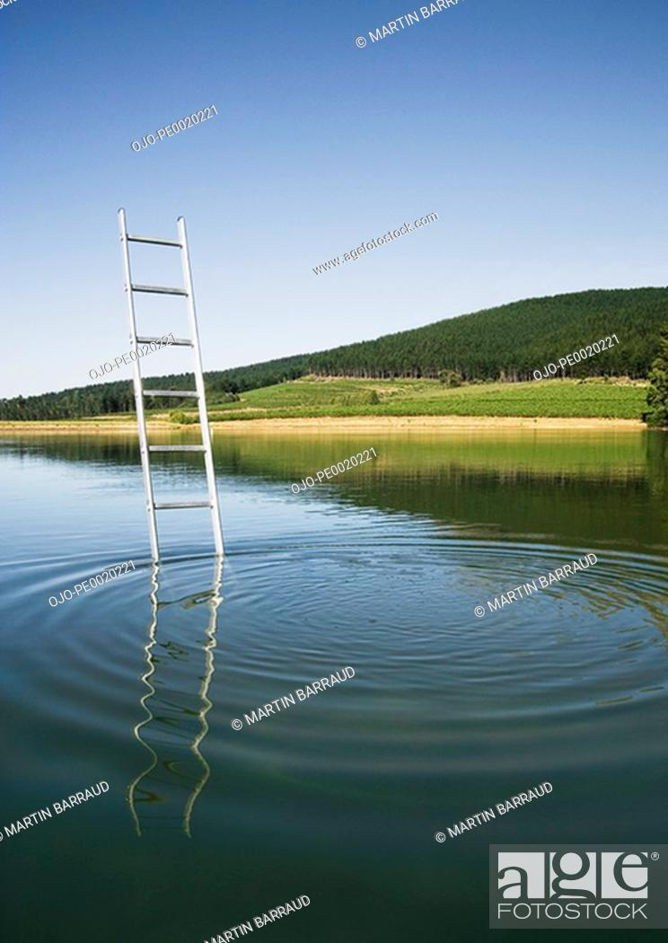 Stock Photo: Ladder emerging from water with trees.