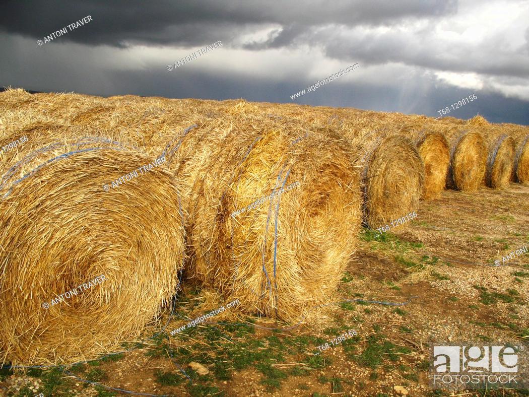 Stock Photo: Straw bales, Teruel province, Aragon, Spain.