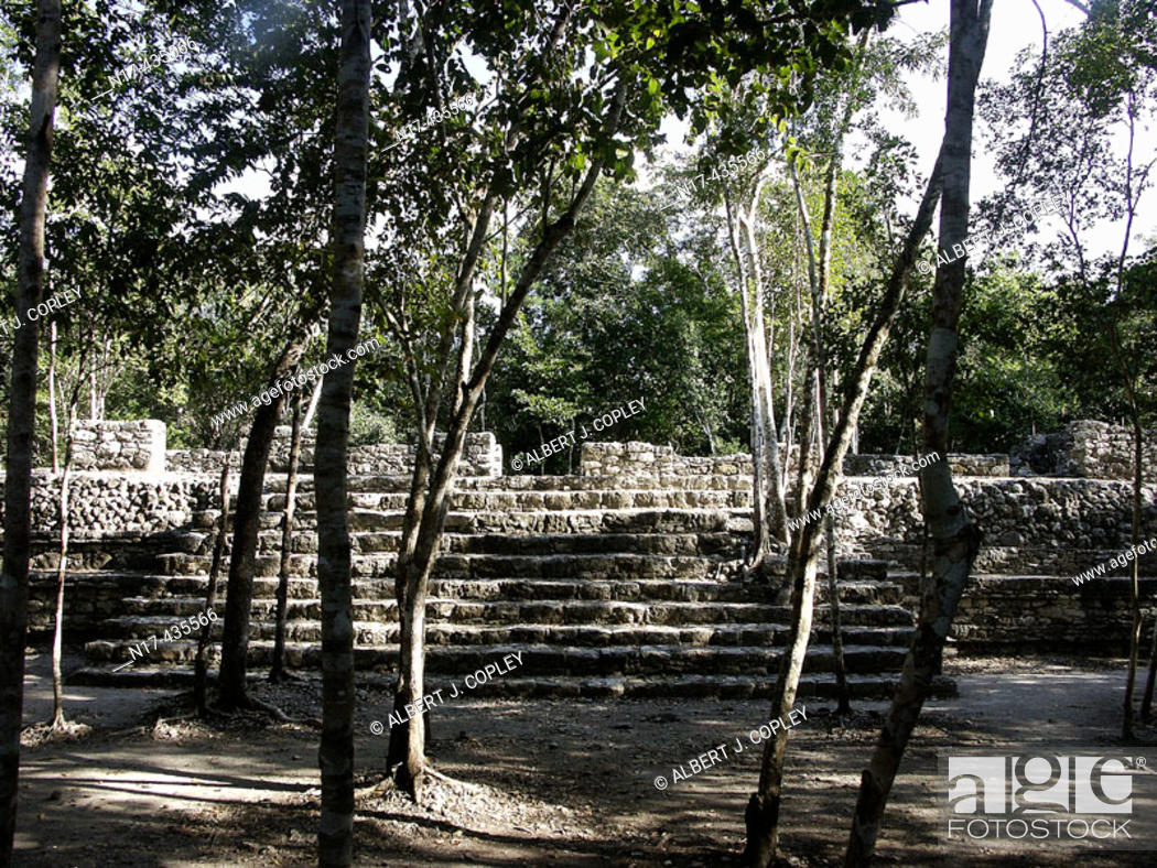 Stock Photo: Coba, ruined city of the Pre-Columbian Maya civilization (600 A.D.). Quintana Roo, Mexico.