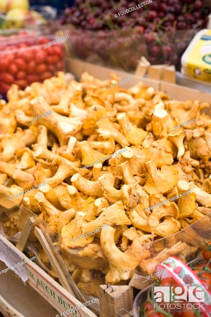 Stock Photo: Fresh chanterelles in a crate at a market.
