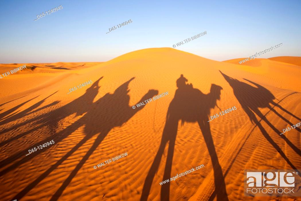 Stock Photo: Tunisia, Ksour Area, Ksar Ghilane, Grand Erg Oriental Desert, camel caravan, sunset.