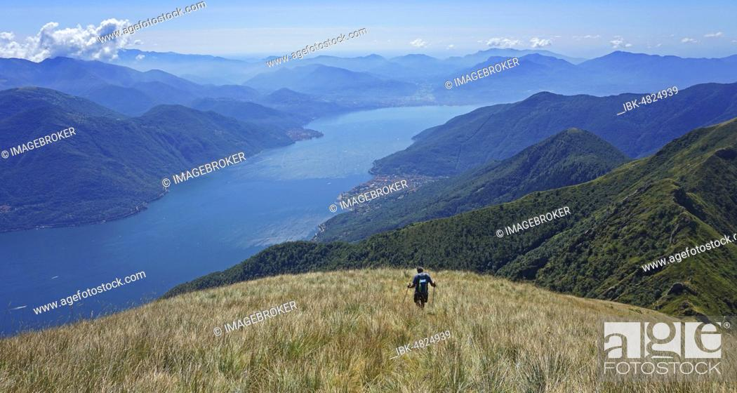 Stock Photo: Hikers in meadow during the descent, view from Monte Gridone to the south on Lago Maggiore, Brisagio, Lago Maggiore, Ticino, Switzerland, Europe.