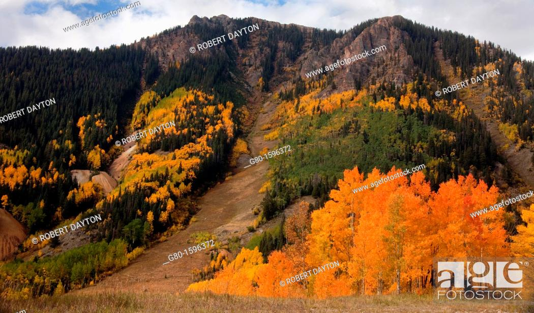 Stock Photo: Autumn color in the San Juan Mountains of Colorado.