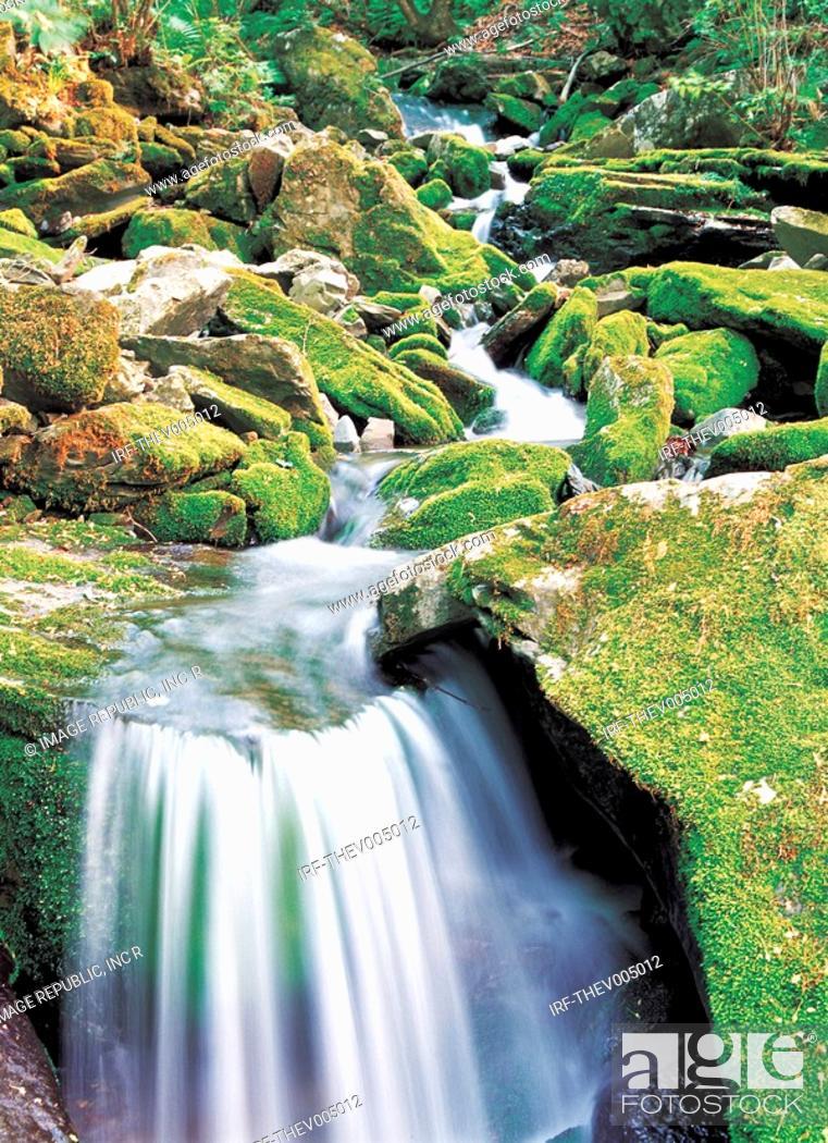 Stock Photo: valley.
