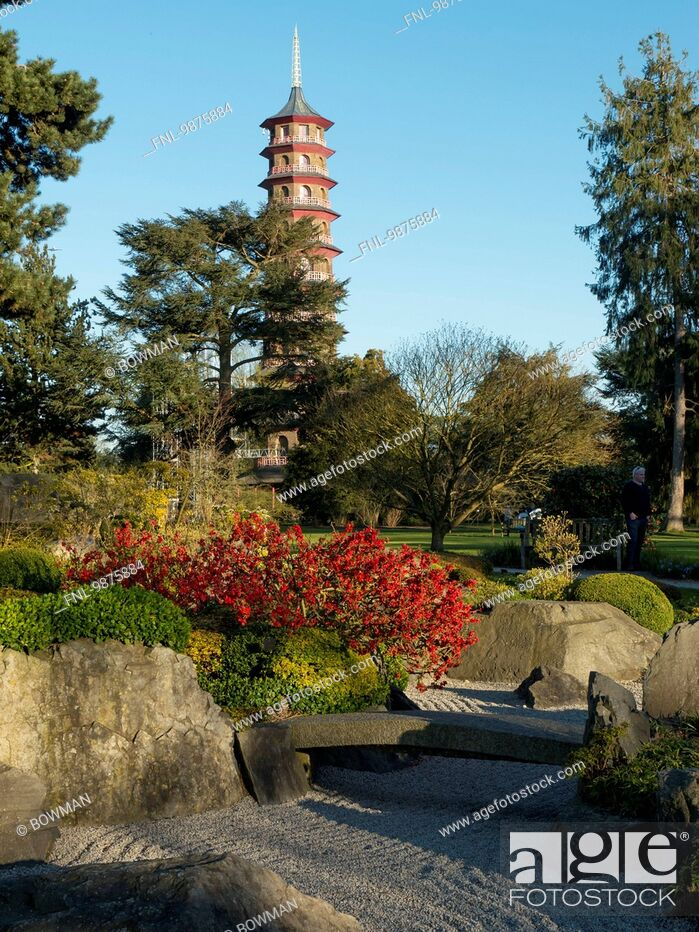 Stock Photo: The Chinese Pagoda, Royal Botanic Gardens, London Borough of Richmond upon Thames, London, England, Great Britain, Europe.